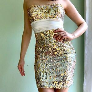 Xtraordinary Sequin Silver/Gold Bodycon Dress